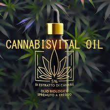 Dónde comprarlo y a qué precio se vende el aceite de Cannabisvital Oil